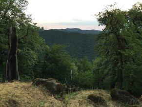 Hyrkanische Wälder bedecken Bergrücken, Hänge und Täler der Talish Mountains im südlichen Teil des Hirkan-Nationalparks in der Republik Aserbaidschan (c) H. D. Knapp