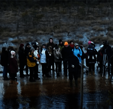 Peatland excursion in the Baltics (Photo: A. Haberl)